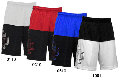 IN THE PAINT[インザペイント] IN THE PAINT AUTHENTIC SHORTS / インザペイント オーセンティック ショーツ