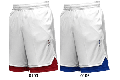 IN THE PAINT[インザペイント] IN THE PAINT PANEL SHORTS / インザペイント パネル ショーツ