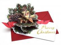 クリスマス フラワー ポップアップ カード LY-28