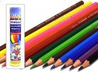 PENSAN ペンサン チューブ12色色鉛筆