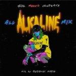 Medz presents   VENDETTA -All ALKALINE Mix- / Bad Gyal Marie
