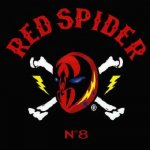 <img class='new_mark_img1' src='https://img.shop-pro.jp/img/new/icons59.gif' style='border:none;display:inline;margin:0px;padding:0px;width:auto;' />[USED] REDSPIDER #8  / REDSPIDER レッドスパイダー