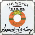 JAH WORKS VINYL BOX / JAH WORKS