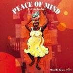 PEACE OF MIND〜Feel Like Dancing〜 / EMPEROR エンペラー