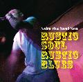 SAKU THE SOUL SON / RUSTIC SOUL, RUSTIC BLUES [CD] - 正真正銘の90'sが『あの頃』では無く2017年版に!