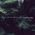 [再入荷待ち] Lex (de kalhex) / Satori [CD] - Uyama Hiroto、Segawa Tatsuya参加!最高傑作インストHip Hopアルバム!
