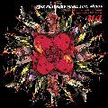 UA / FINE FEATHERS MAKE FINE BIRDS [2枚組CD] - 情熱とリズム収録ってだけでUAファンは買いでしょう。
