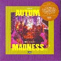 DJ KIYO / Autumn Madness 2 [MIX CD] - DJ KIYOの持つ独特なバランス感はここでも健在!
