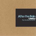 【廃盤】DJ Kenta / After the Rain [MIX CD] - 雨後の暑さを情熱的に表現