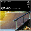 [予約] DJ KENTA (ZZ PRODUCTION) / Sunlight Filters [MIX CD] - 「introducing!」音源からDJ KENTA独自の嗅覚で厳選! -