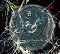 [予約] 符和 / Feel Makin' Love [MIX CD] - サンプリングヒップホップ、往年のR&Bクラシックを中心に!