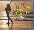 DJ Kirist / Down Love Story 14 ( Reggae Cover ) [MIX CD] - 人気のラヴァーズカヴァーもの!!