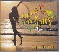 DJ Kirist / Down Love Story 14 ( Reggae Cover ) [MIX CD] - 人気のラヴァーズカヴァーもの!!