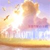 DJ Musasabi a.k.a. Ai-Kee / Migratory Bird - 渡り鳥
