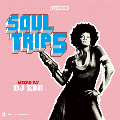 DJ EBE / SOUL TRIP 5 [MIX CD] - DISCO〜BOOGIEクラシックをMIX!