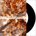 【送料無料】DJ U-SAY / Chillout HipHop vol.1 - Japanese Edition [CD-R] - メローな気持ちいいヒップホップをライブミックス!