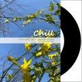 【送料無料】DJ U-SAY / Chillout R&B vol.2 - Japanese Edition [CD-R] - チルでメローな気持ちいいR&Bをライブミックス!
