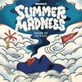 DJ KIYO / SUMMER MADNESS 4 [MIX CD] - 涼感度数高めのクールアウトHIP HOPチューン満載!