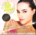 【廃盤】DJ Roc The Masaki / Digital Roc - R&B House Party Megamix Pt.2 [MIX CD] - 倉庫ストック最後の1枚!!!次回ありません!