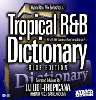 [再入荷待ち]DJ DDT-Tropicana / Tropical R&B Dictionary BLUE EDITION-90's US R&B Classics Vol.2