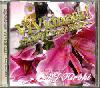 DJ Hiroki / ViVidness! -Lovely Cover's R&B- [MIX CD] - R&B名曲カヴァーのみ
