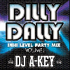 DJ A-KEY / DILLY DALLY -IN HI LEVEL PARTY MIX- [MIX CD] - ブチアゲ鉄板PARTY MIX!!