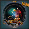 DJ KOCO a.k.a. SHIMOKITA / TRIUMPH RECORDS PRESENTS - VISUALIBRARY Vol.2 [MIX DVD]
