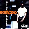 Big Noyd / Episodes Of A Hustla [CD] - STRETCH ARMSTRONGのUSUAL SUSPECT(REMIX)収録!