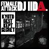 DJ IIDA / Female Attack [MIX CD-R] - なかなか出会えない珍盤まで収録!