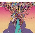 [※再入荷待ち]marcus D / Lone Wolf ( CD Album ) - 豪華でジャンルを超えた多彩な才能とのコラボレーションが実現した一枚。