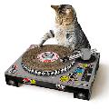 ターンテーブル型 爪とぎ Cat Scratch Turntable