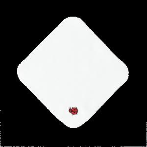 ミニタオル(てんとう虫)