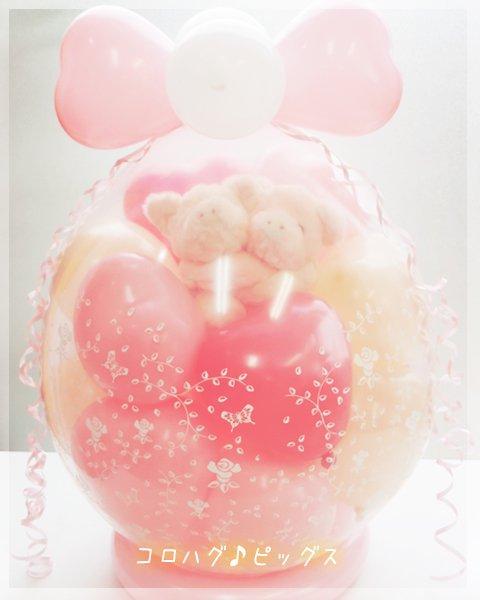 コロハグ♪ピッグス
