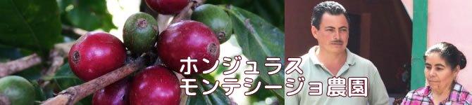 【ホンジュラス モンテシージョ農園ブルボン】生豆220gを受注後焙煎【限定】【画像2】