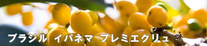 【イパネマ  プレミエクリュ】 生豆220gを受注後焙煎【画像2】