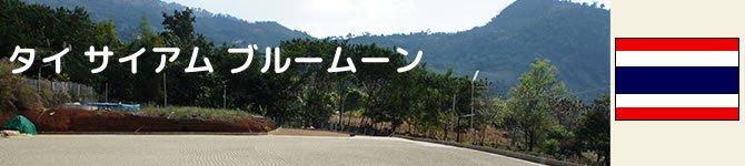 【タイ・サイアム ブルームーン】 生豆220gを受注後焙煎【限定】【画像2】