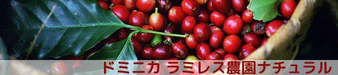 【ドミニカ ラミレス農園ナチュラル】 生豆220gを受注後焙煎