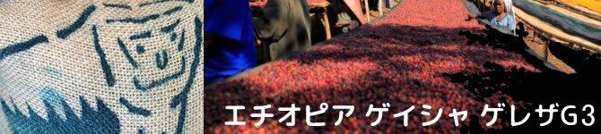 【エチオピア ゲイシャ ゲレザG3】 生豆220gを受注後焙煎【限定】