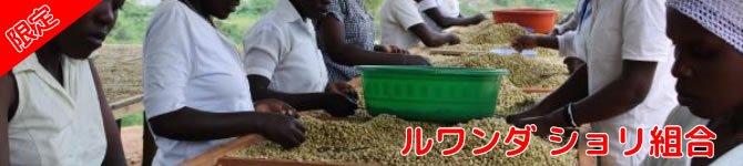 【ルワンダ・ショリ組合】 生豆220gを受注後焙煎【限定販売】