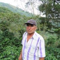 【コロンビア ウイラ オポラパ】 生豆220gを受注後焙煎【限定】
