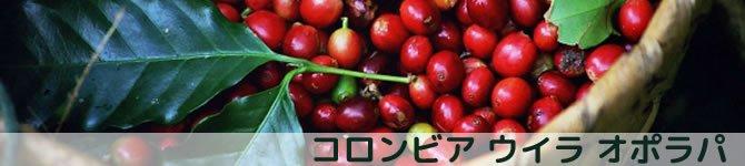 【コロンビア ウイラ オポラパ】 生豆220gを受注後焙煎【限定】【画像2】