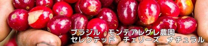 【モンテアレグレ農園セレクテッド チェリーズ】 生豆220gを受注後焙煎【限定】【画像2】
