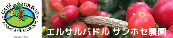 【エルサルバドル・サンホセ農園】 生豆220gを受注後焙煎【限定】