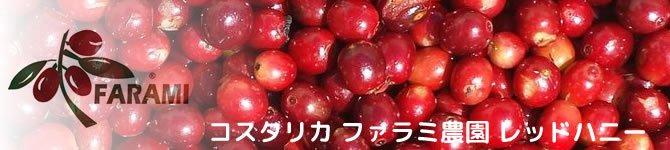 【コスタリカ・ファラミ農園レッドハニー】 生豆220gを受注後焙煎【数量限定】【画像2】