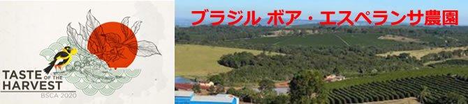 ブラジル・ボア エスペランサ農園