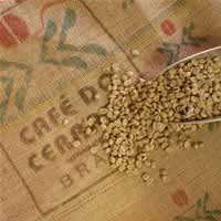 【ブルボンアマレロ】 生豆220gを受注後焙煎