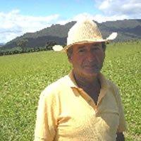 【ブラジル・サンジュダス タデウ農園】 生豆220gを受注後焙煎【限定】