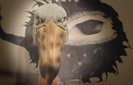 ハシビロコウ指マスク