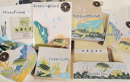 ぞうさんペーパー 海 グリーティングカード(ウミガメ)