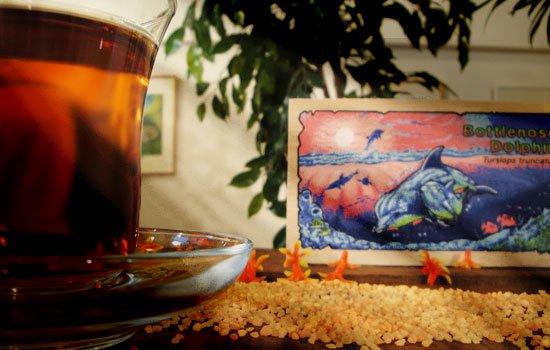 オーガニック紅茶(アールグレイ) ハンドウイルカ